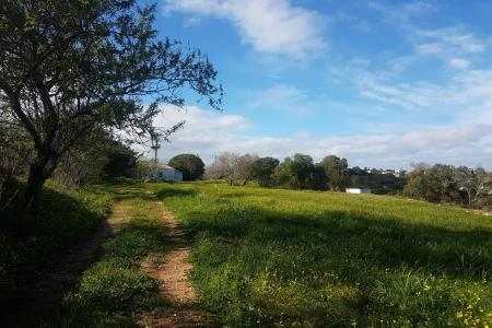 Terreno com ruina, Western - Carvoeiro, Lagoa (Algarve)