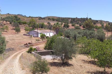 Quintinha, Eastern - Tavira, Tavira